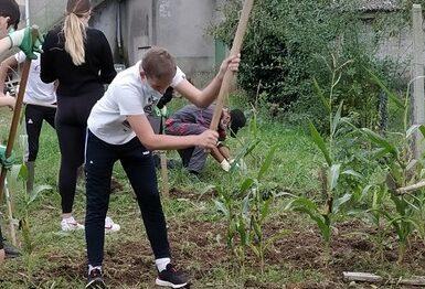 seance-de-jardinage-en-3eea